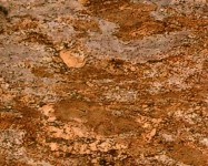 Technisches Detail: Crema Bordeaux Light Brasilianischer polierte Natur, Granit