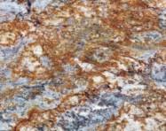 Technisches Detail: GOLDEN TYPHOON Brasilianischer polierte Natur, Granit