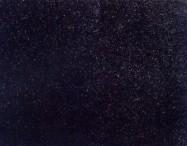 Technisches Detail: ZHANG QIU BLACK Chinesischer polierte Natur, Granit