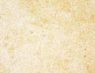 Technisches Detail: VILHONNEUR BANC 8-9 Französischer geschliffene Natur, Sandstein