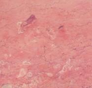 Technisches Detail: BAJESTAN (2) Iranischer polierte Natur, Marmor