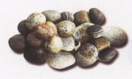 Technisches Detail: MISTO GRIGIO Italienischer getrommelte Natur, Marmor