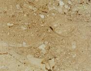 Technisches Detail: PERLATO OLIMPO CHIOCCIOLATO MEDIO Italienischer polierte Natur, Marmor