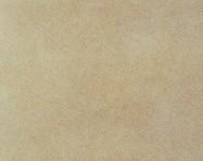 Technisches Detail: ARENISCA QUARCÍTICA JUNEDA Spanischer geschliffene Natur, Sandstein