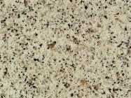 Technisches Detail: BLANCO NIEVE Spanischer polierte Natur, Granit