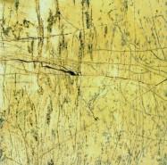 Technisches Detail: AMARILLO BM/REY Spanischer polierte Natur, Marmor