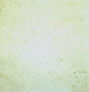 Technisches Detail: SNOW WHITE Türkischer polierte Natur, Marmor