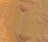 Technisches Detail: HONEY ONYX Türkischer polierte Natur, Onyx