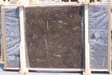 Lieferung polierte Unmaßplatten 2 cm aus Natur Marmor MARRON FOSSIL E-14694. Detail Bild Fotos
