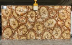 Lieferung polierte Unmaßplatten 2 cm aus Natur Halbedelstein PETRIFIED WOOD BROWN TL0142. Detail Bild Fotos