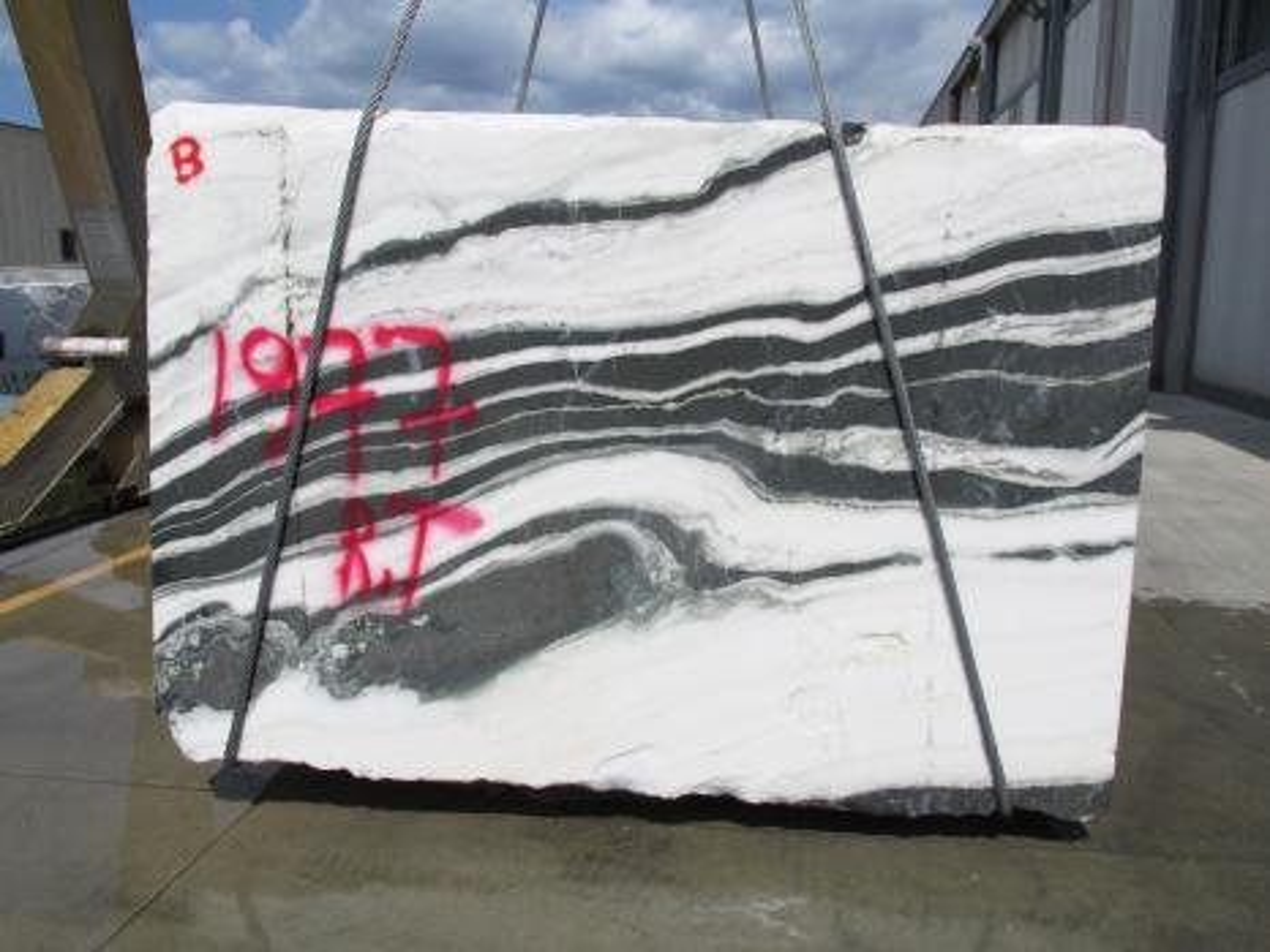 PANDA rohe Blöcke 1771M aus Natur Marmor , Face B: Lieferung Veneto, Italien