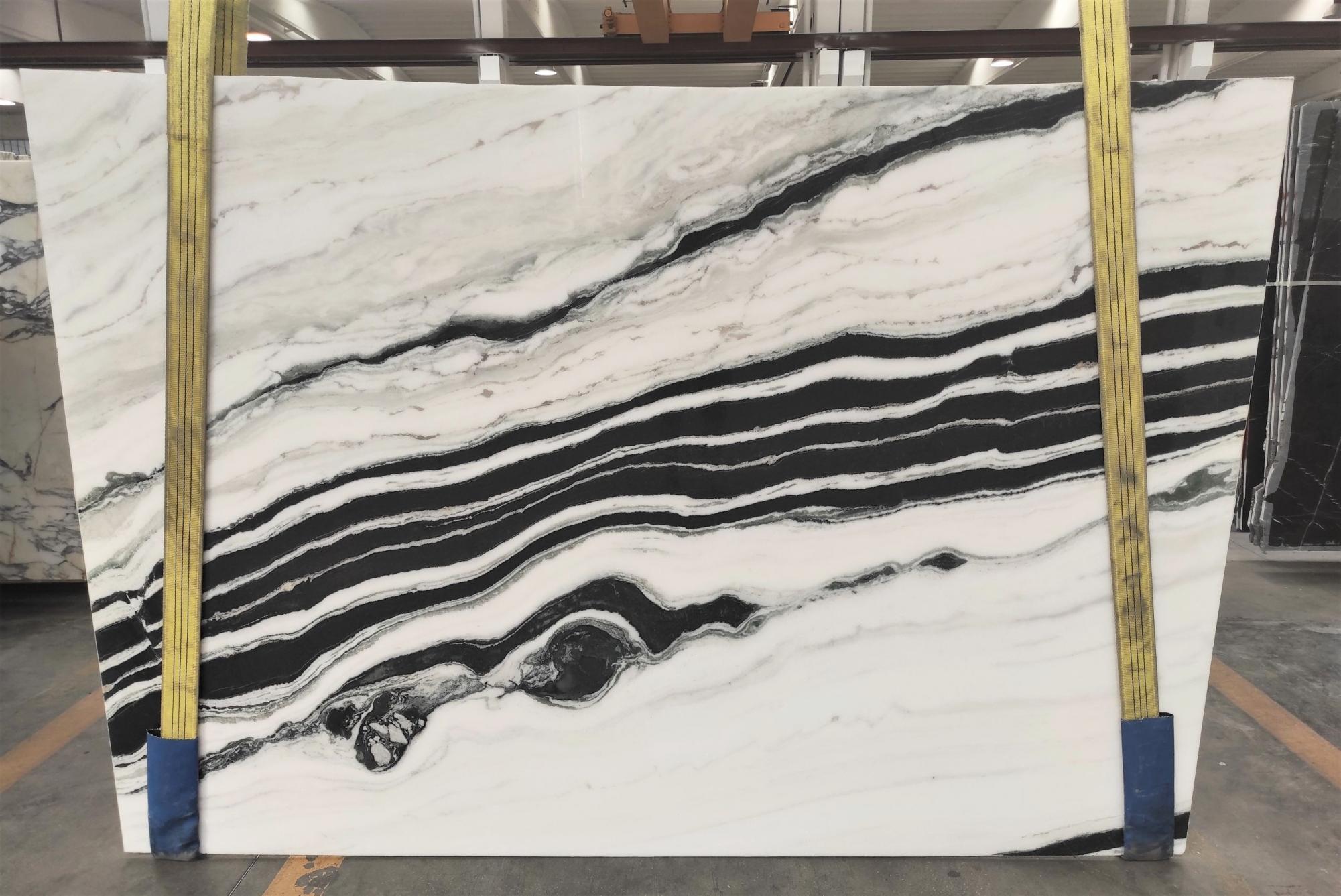 PANDA polierte Unmaßplatten 1771M aus Natur Marmor , Slab #11: Lieferung Veneto, Italien
