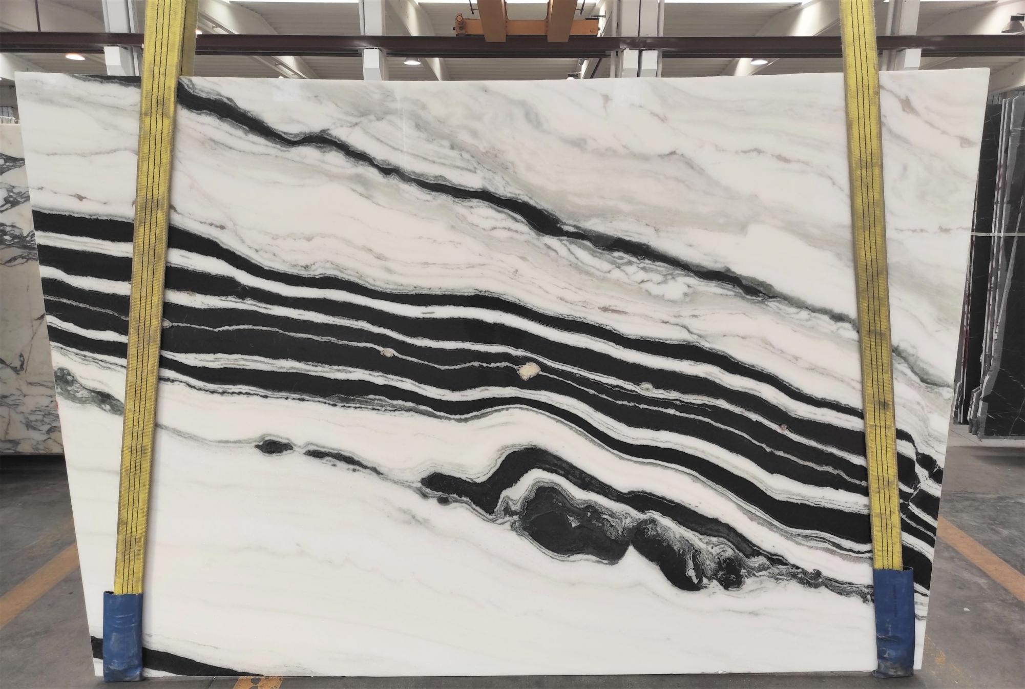 PANDA polierte Unmaßplatten 1771M aus Natur Marmor , Slab #22: Lieferung Veneto, Italien