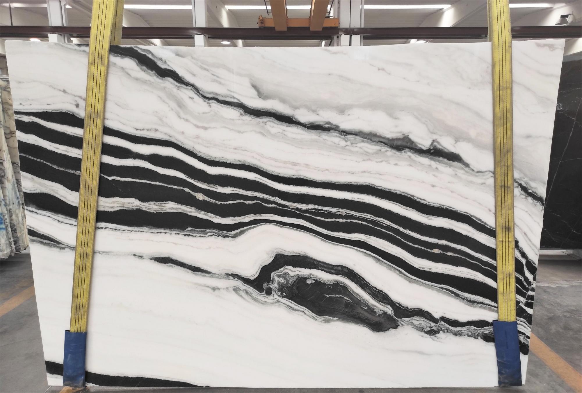 PANDA polierte Unmaßplatten 1771M aus Natur Marmor , Slab #43: Lieferung Veneto, Italien